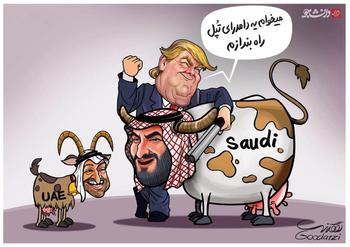 دامداری تپل در آمریکا+کاریکاتور
