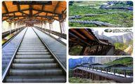 طولانیترین پله برقی جهان در چین! +عکس