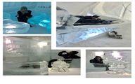 تصویری از الناز شاکردوست در هتل یخی قطب شمال