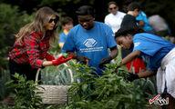 باغبانی بانوی اول آمریکا در کاخ سفید /تصاویر