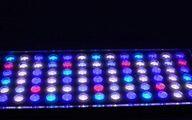 تولید چراغهای پیشرفته LED با دانش ایرانی