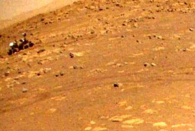 مریخ نورد
