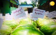 تصاویر دیده نشده از روشهای خلاقانه اعتراضات ضد کودتا در میانمار