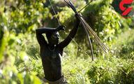 تصاویری عجیب و جالب از قبیله گم شده در اقیانوس هند