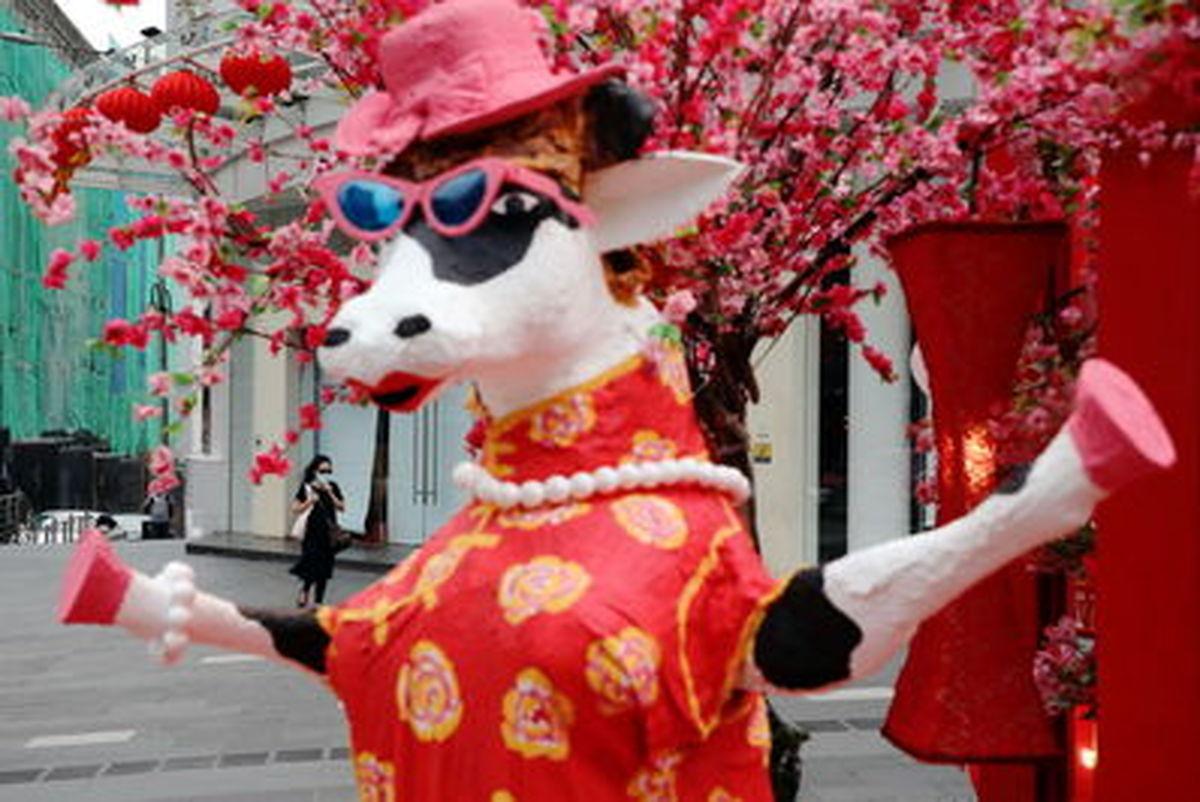 تصاویر جذاب از جشن سال نو قمری در کشورهای گوناگون