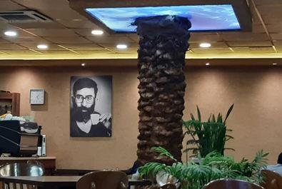 حزب اللهی ها