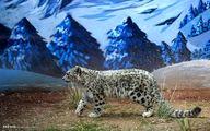 منتخب تصاویر حیات وحش در هفته گذشته