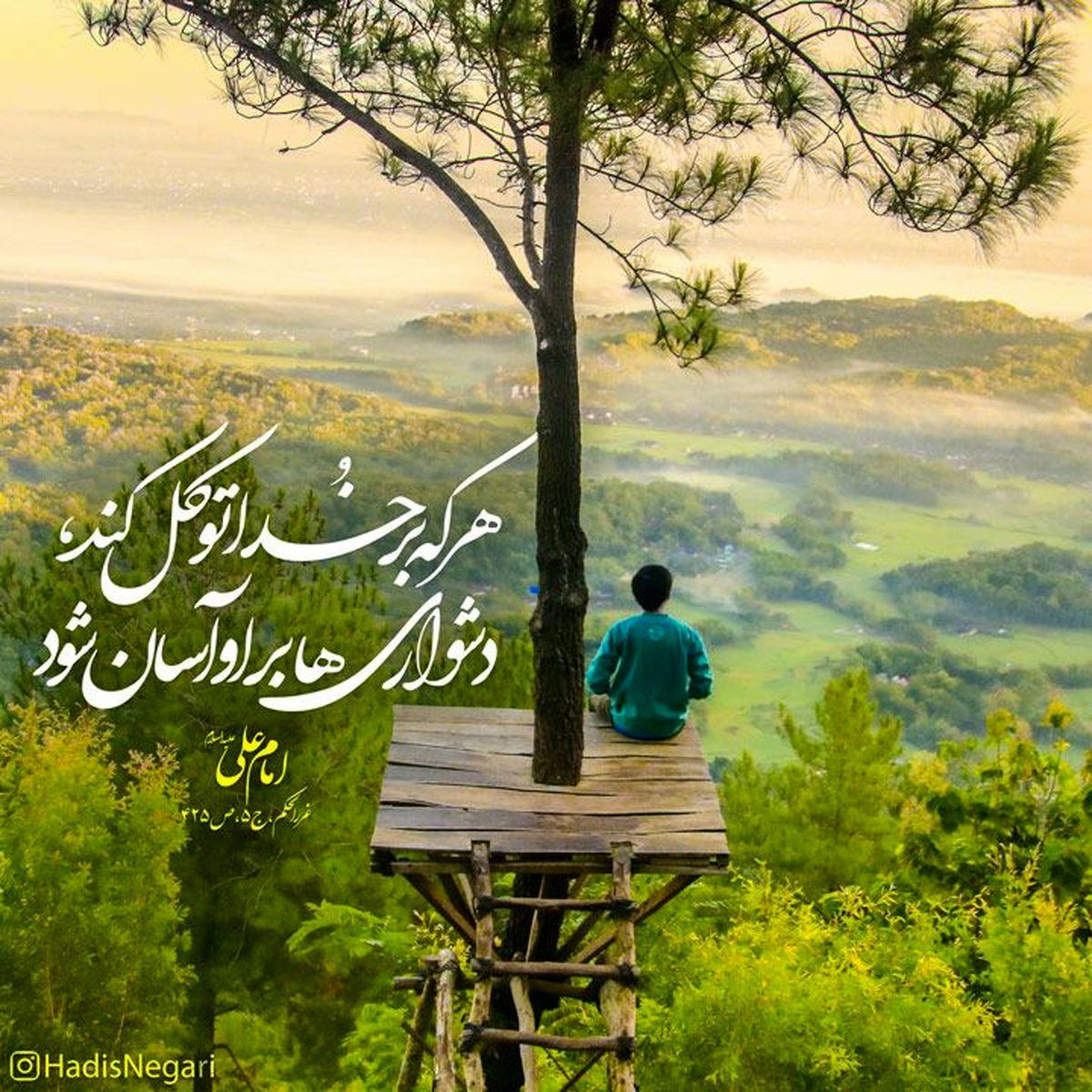 حدیث زیبای حضرت علی (ع) درمورد توکل داشتن