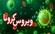 جدیدترین خبر درباره ویروس کرونای ایرانی + جزئیات