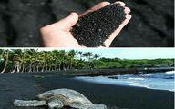 ساحل شن سیاه پونالوو، هاوایی/ عکس