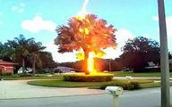 لحظه اصابت یک صاعقه به یک درخت!عکس
