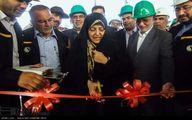 سفر رییس سازمان حفاظت محیط زیست به استان اصفهان/تصاویر