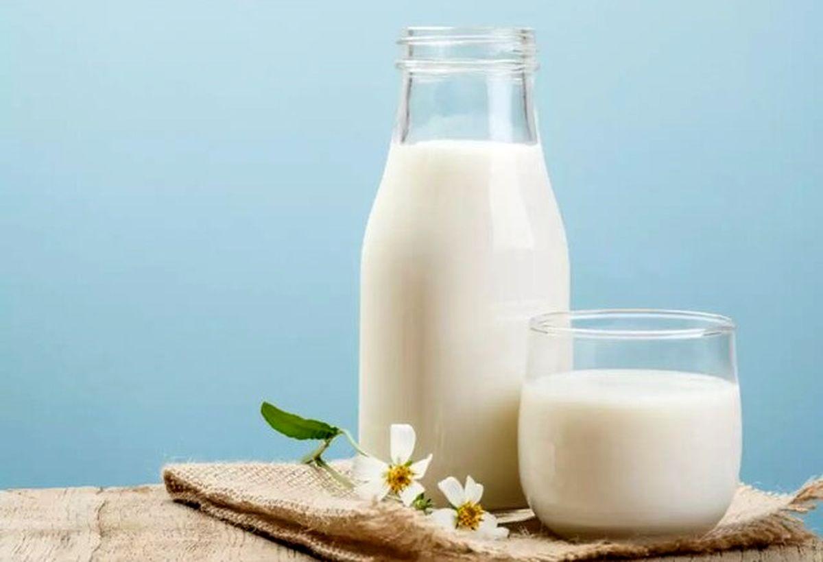 چاق ها بخوانند: کاهش ۲ برابری وزن با مصرف شیر