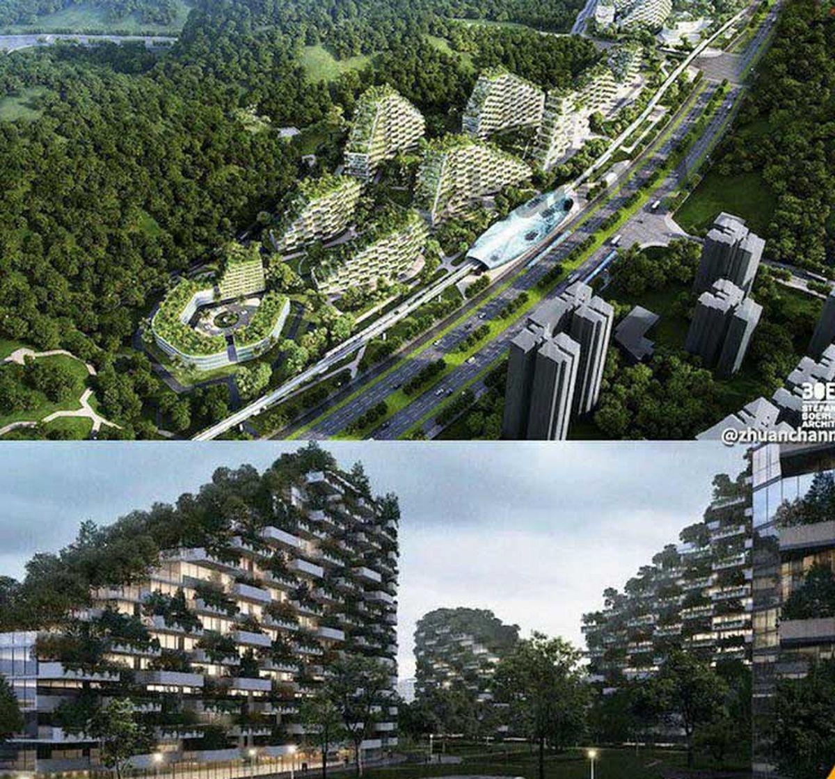 نخستین شهر جنگلی با بیش از 1 میلیون گیاه
