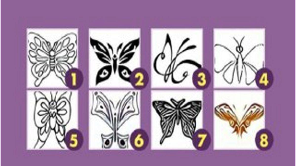 تست شخصیت شناسی/ یک پروانه انتخاب کنید و خود را بیشتر بشناسید