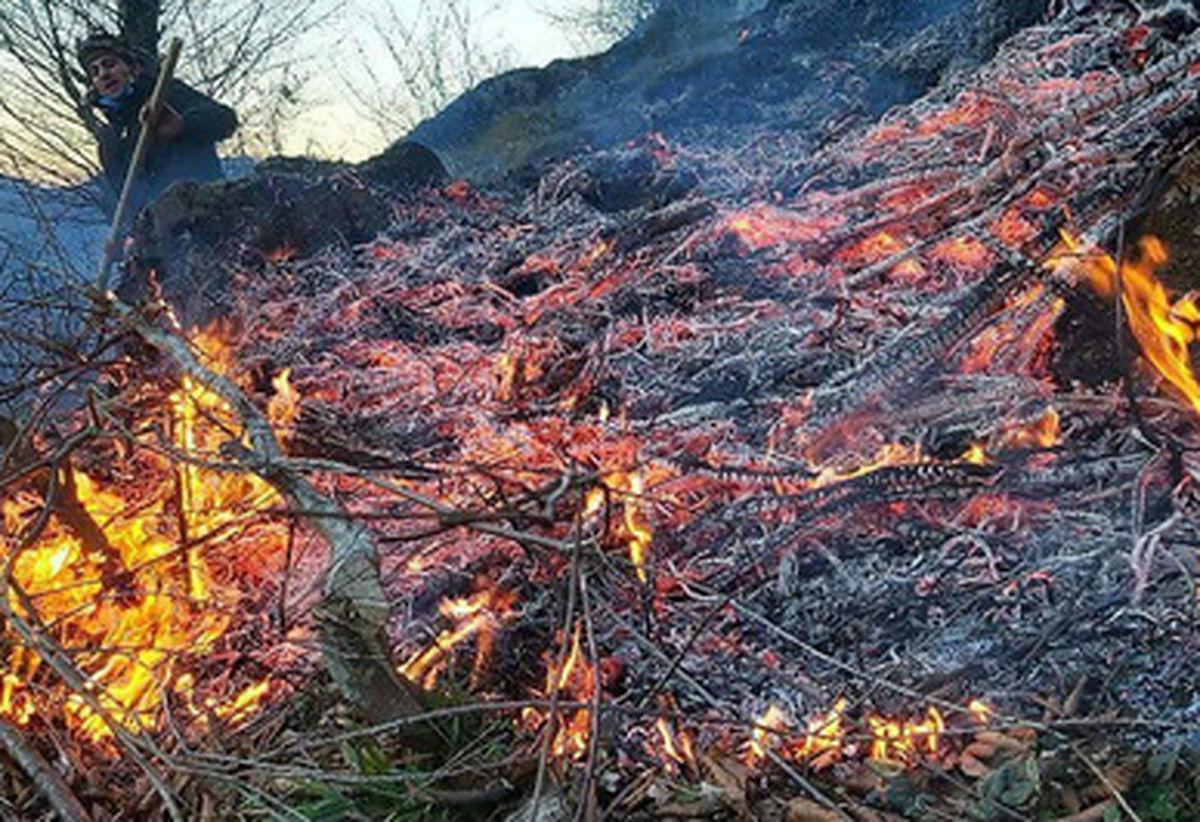 گزارش تصویری از آتش سوزی در مناطق مسکونی گیلان