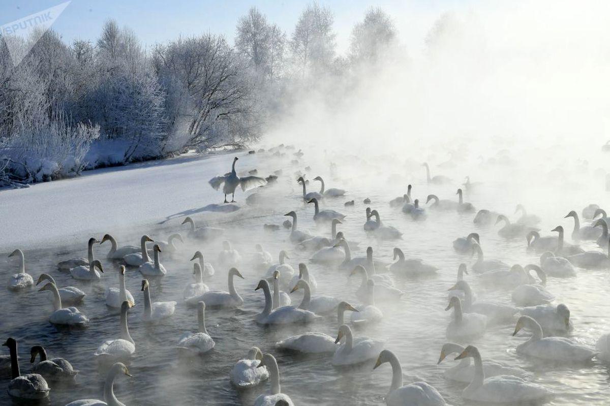 عکسی جذاب و زیبا از حال و هوای روسیه